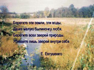 Берегите эти земли, эти воды, Даже малую былиночку любя. Берегите всех зверей