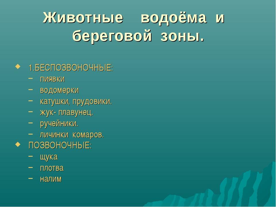 Животные водоёма и береговой зоны. 1.БЕСПОЗВОНОЧНЫЕ: пиявки водомерки катушки...