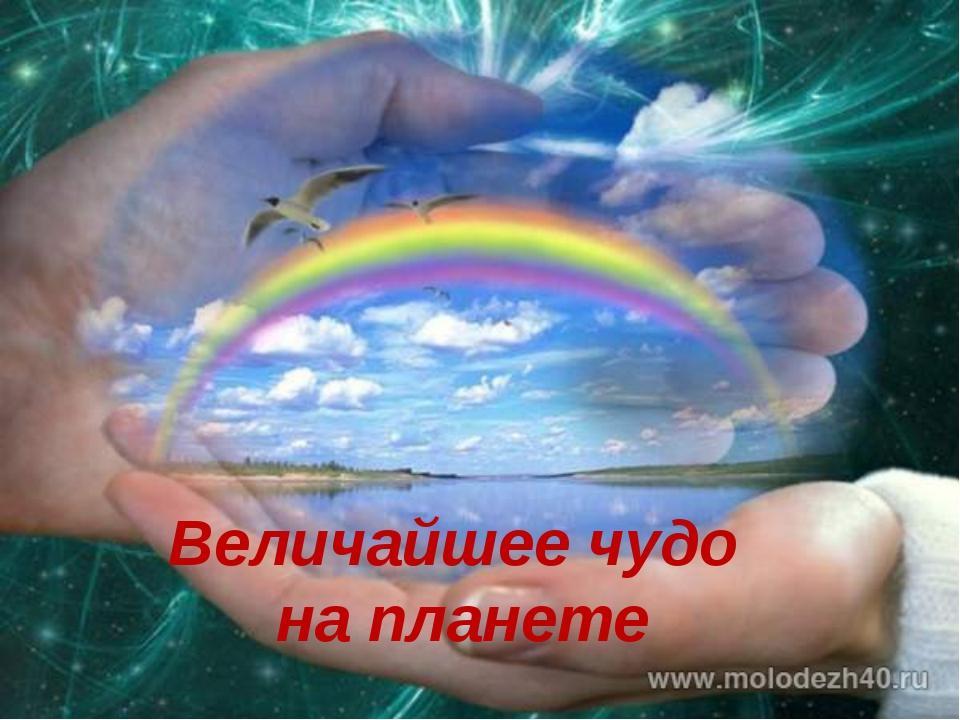 Не бывает на свете чудес все мы сделаем своими руками