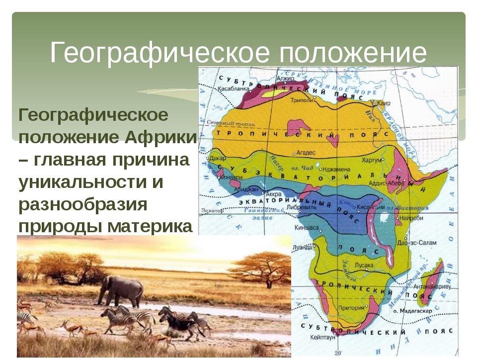 Географическое положение Географическое положение Африки – главная причина ун...