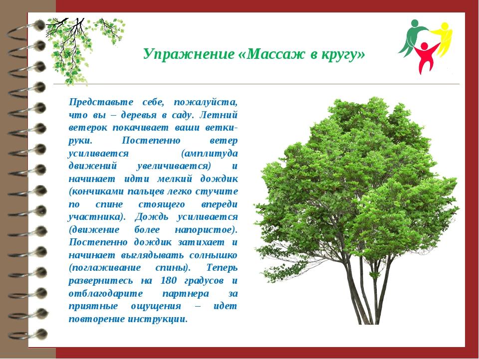 Упражнение «Массаж в кругу» Представьте себе, пожалуйста, что вы – деревья в...