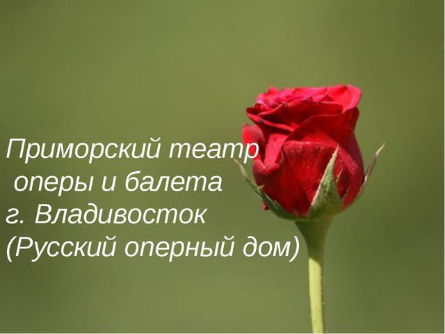 Приморский театр оперы и балета г. Владивосток (Русский оперный дом) Page *