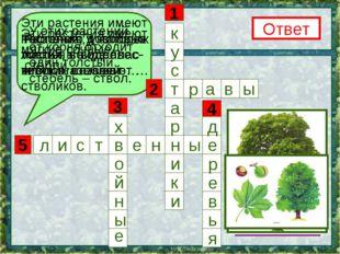 5 3 1 4 2 Эти растения имеют несколько довольно тонких, но одревес- невших ст