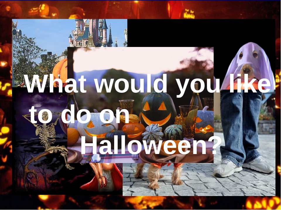 What would you like to do on Halloween?