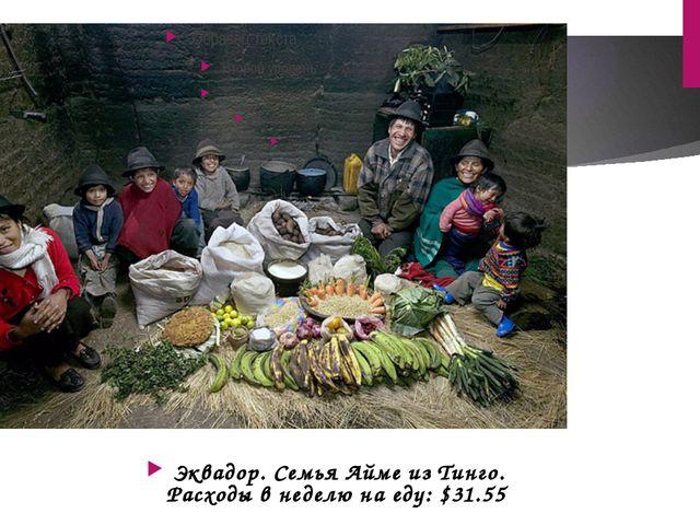 Эквадор. Семья Айме из Тинго. Расходы в неделю на еду: $31.55