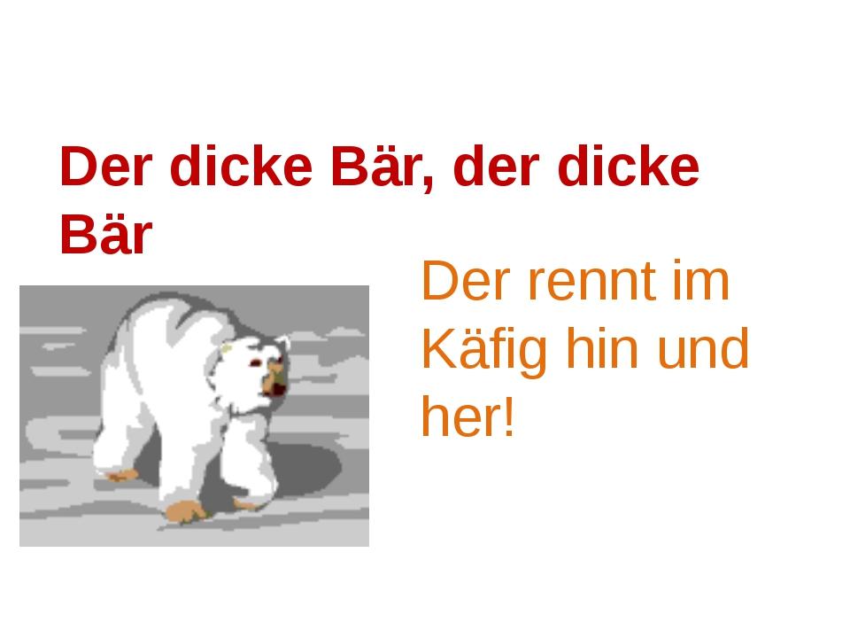 Der dicke Bär, der dicke Bär Der rennt im Käfig hin und her!