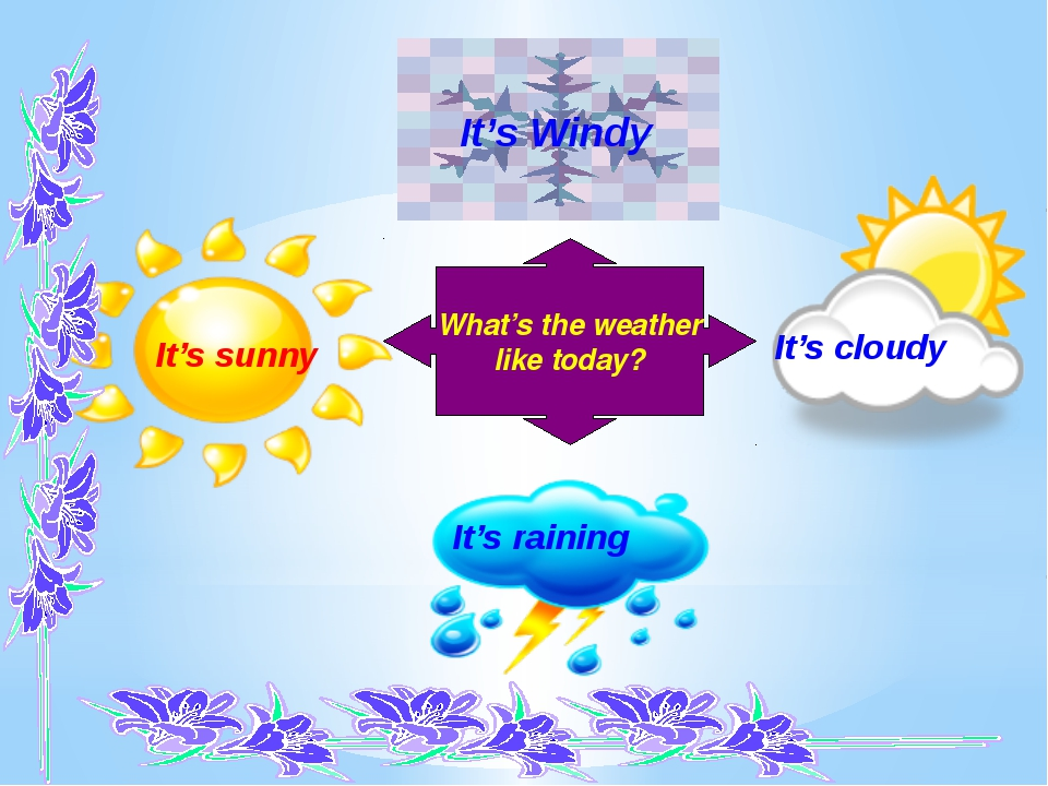 It's sunny It's raining It's cloudy What's the weather like today? It's Windy