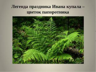 Легенда праздника Ивана купала – цветок папоротника