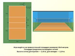 Игра ведётся на прямоугольной площадке размером 18х9 метров. Площадка раздел