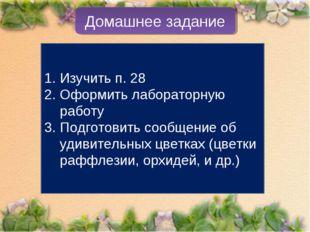 Домашнее задание Изучить п. 28 Оформить лабораторную работу Подготовить сообщ