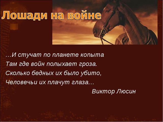 …И стучат по планете копыта Там где войн полыхает гроза. Сколько бедных их бы...