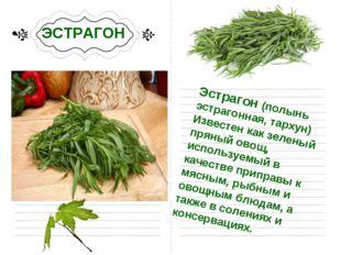 ЭСТРАГОН Эстрагон (полынь эстрагонная, тархун) Известен как зеленый пряный о