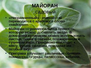 МАЙОРАН садовый «Несравненный» - именно так переводится с арабского слово «ма