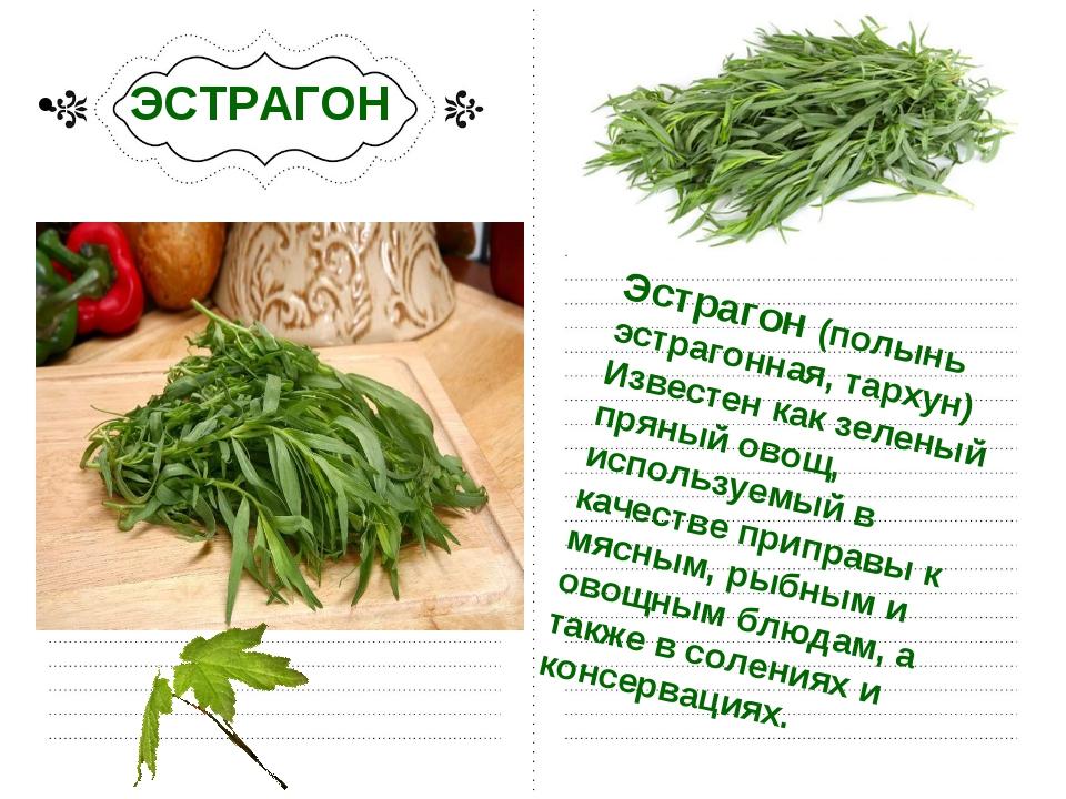 ЭСТРАГОН Эстрагон (полынь эстрагонная, тархун) Известен как зеленый пряный о...