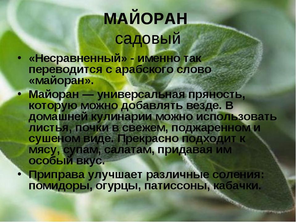 МАЙОРАН садовый «Несравненный» - именно так переводится с арабского слово «ма...
