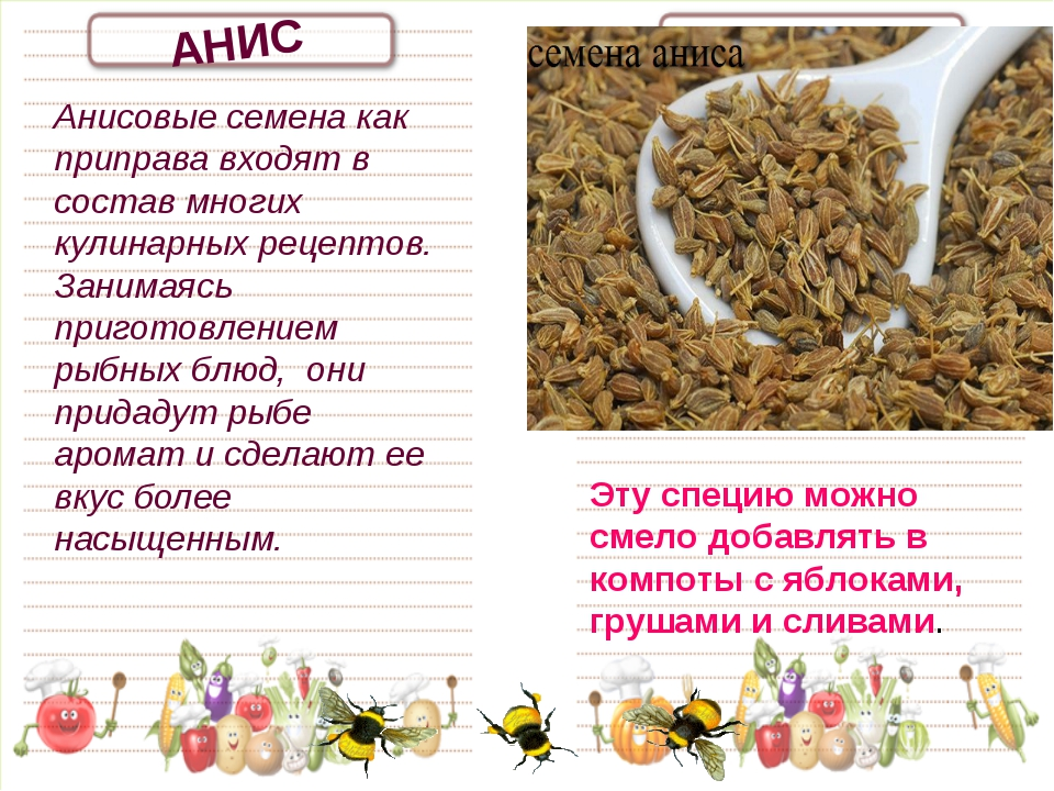 АНИС Анисовые семена как приправа входят в состав многих кулинарных рецептов....