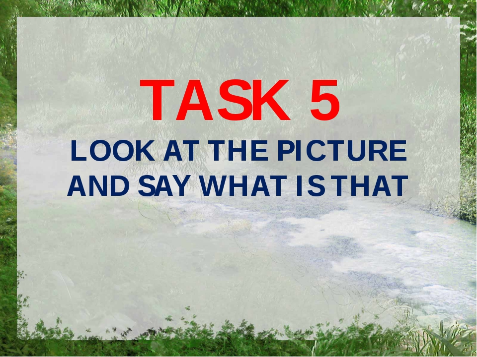 TASK 5 LOOK AT THE PICTURE AND SAY WHAT IS THAT