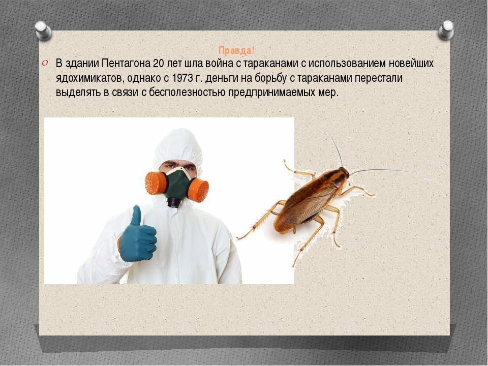 Правда! В здании Пентагона 20 лет шла война с тараканами с использованием нов...