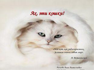 Ах, эти кошки! «Мой кот, как радиоприемник, Зеленым глазом ловит мир» А. Возн