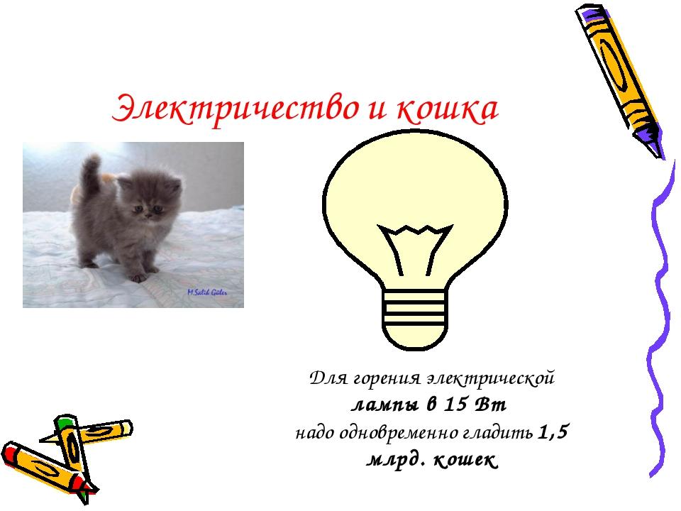 Электричество и кошка Для горения электрической лампы в 15 Вт надо одновремен...