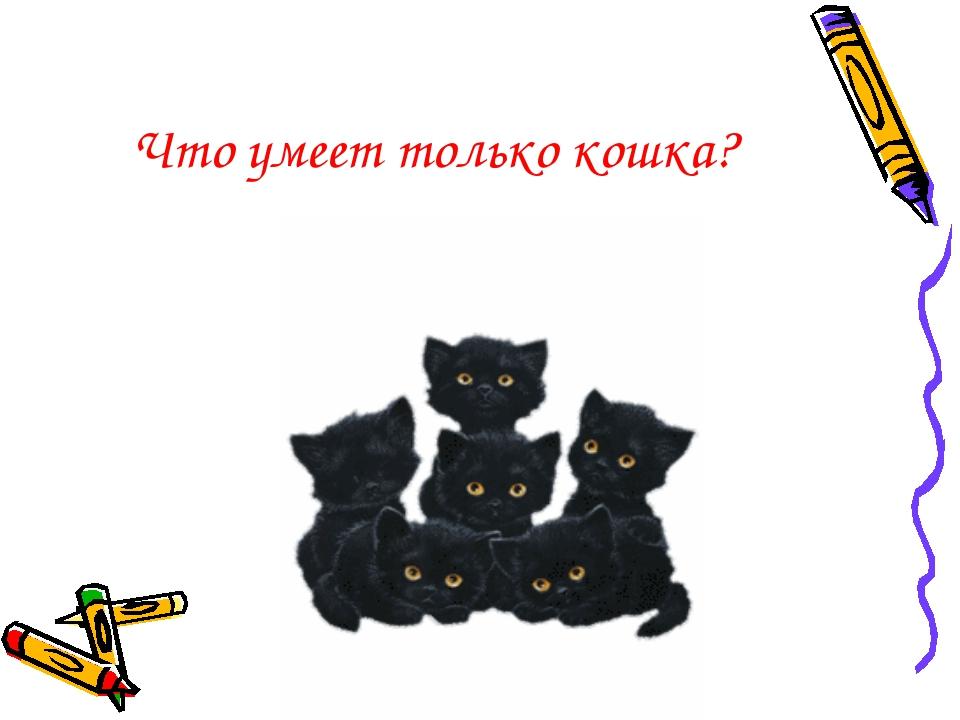 Что умеет только кошка?