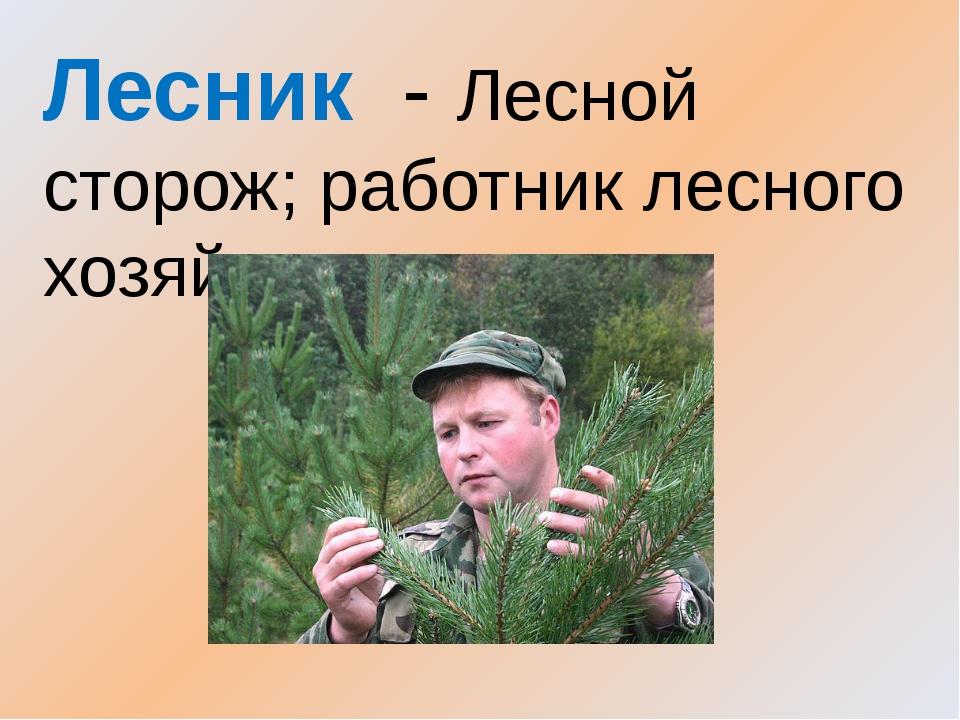 Лесник - Лесной сторож; работник лесного хозяйства.