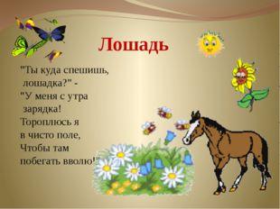 """Лошадь """"Ты куда спешишь, лошадка?"""" - """"У меня с утра зарядка! Тороплюсь я в ч"""