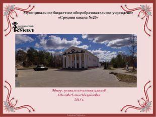 Муниципальное бюджетное общеобразовательное учреждение «Средняя школа №20» Ав