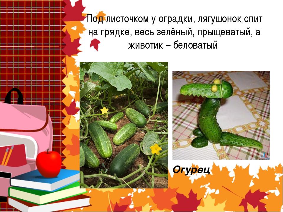 Под листочком у оградки, лягушонок спит на грядке, весь зелёный, прыщеватый,...