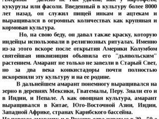 """Историческая справка: О том, как увядал """"Неувядающий цветок"""" Судьба амаран"""