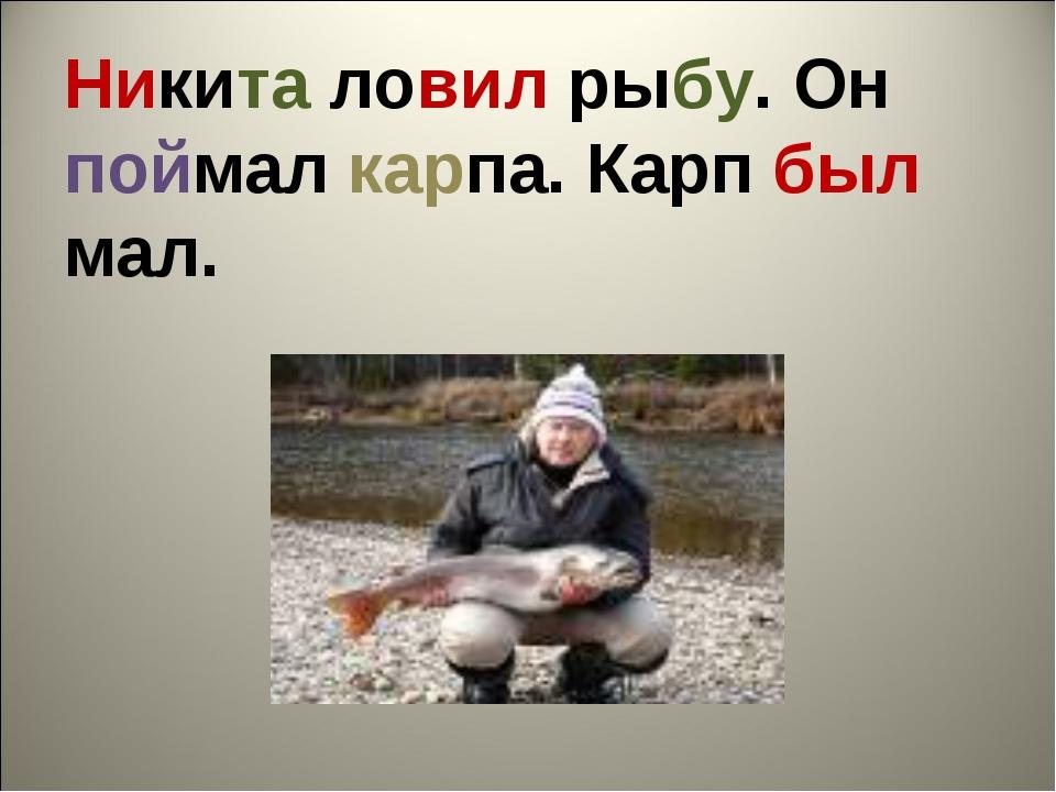 Никита ловил рыбу. Он поймал карпа. Карп был мал.