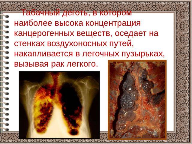 Табачный деготь, в котором наиболее высока концентрация канцерогенных вещест...