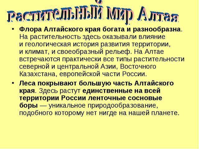 Флора Алтайского края богата иразнообразна. Нарастительность здесь оказывал...