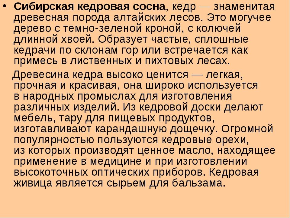 Сибирская кедровая сосна, кедр— знаменитая древесная порода алтайских лесов....