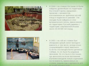 В 2000 г. на стоянке Костенки-14 были найдены древнейшие на территории Восто