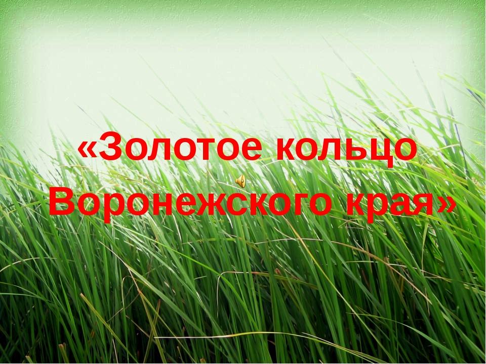 «Золотое кольцо Воронежского края»