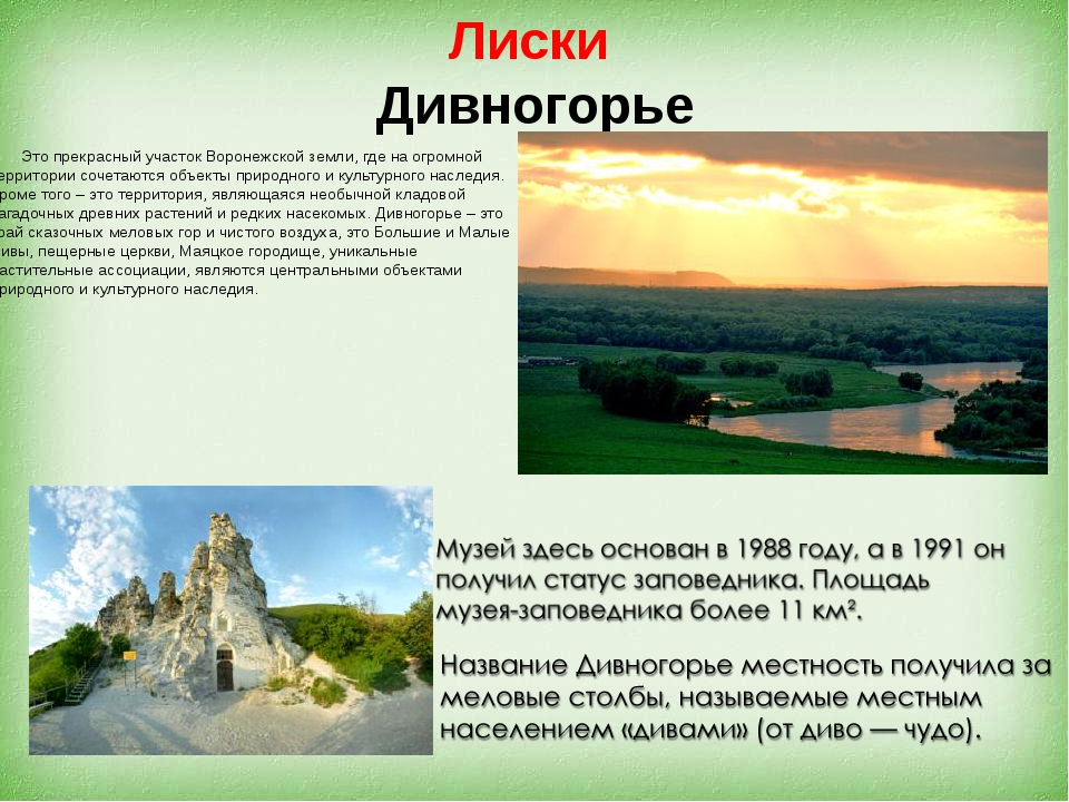 Лиски Дивногорье Это прекрасный участок Воронежской земли, где на огромной те...