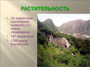 На территории заповедника выявлено 212 видов лишайников, 147 видов мхов 1500