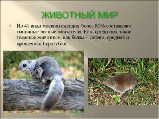 Из 41 вида млекопитающих более 80% составляют типичные лесные обитатели. Есть