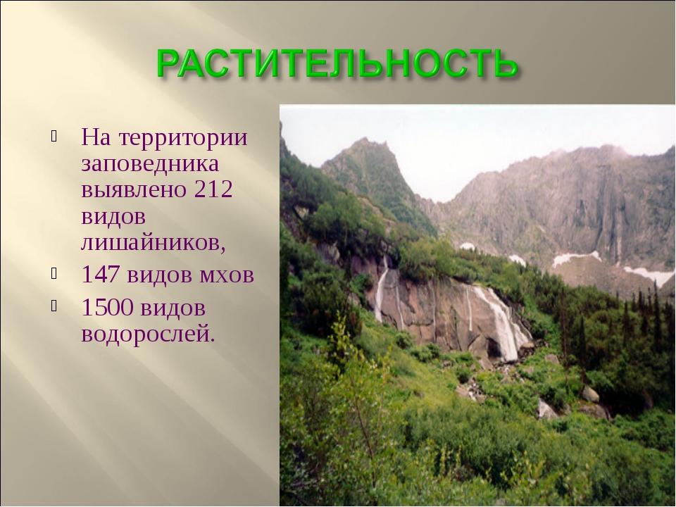 На территории заповедника выявлено 212 видов лишайников, 147 видов мхов 1500...