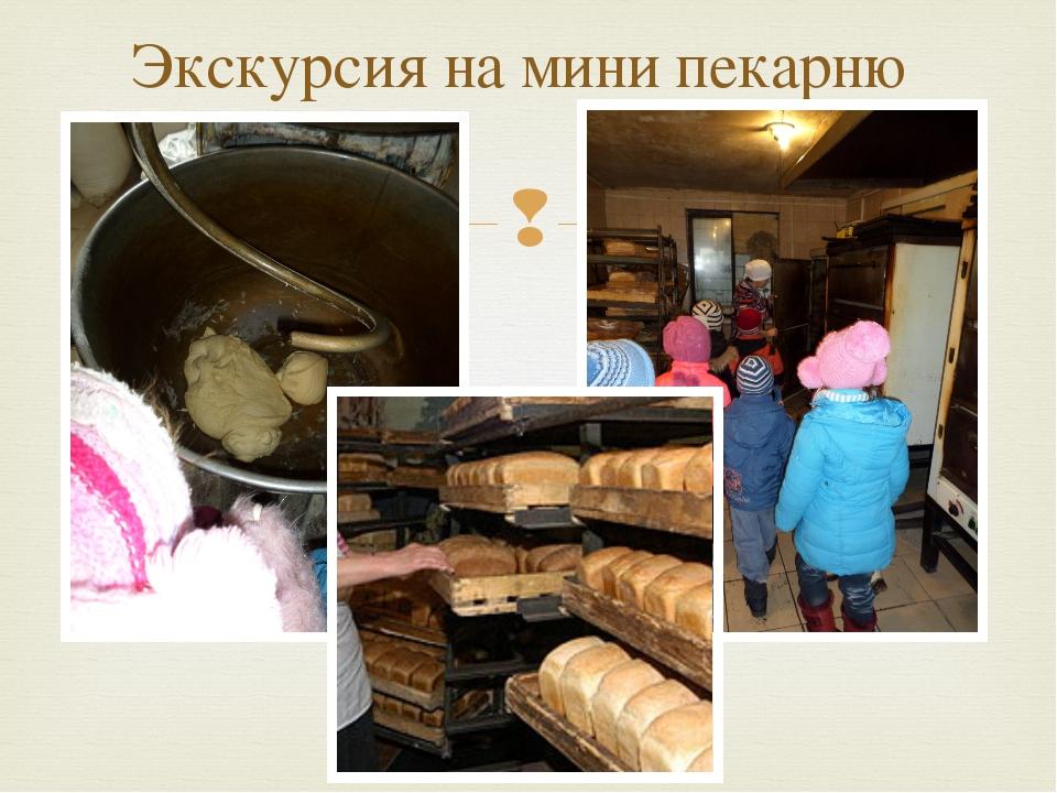 Экскурсия на мини пекарню 