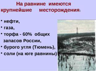На равнине имеются крупнейшие месторождения: нефти, газа, торфа - 60% общих