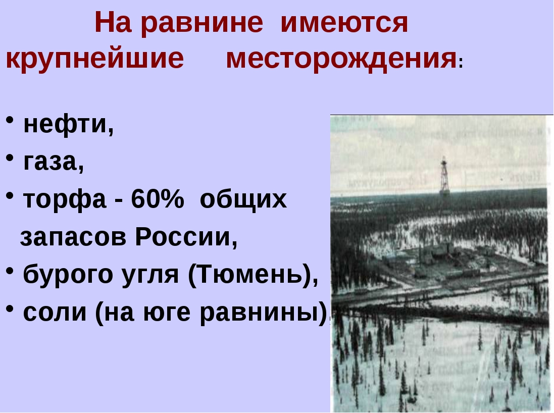 На равнине имеются крупнейшие месторождения: нефти, газа, торфа - 60% общих...