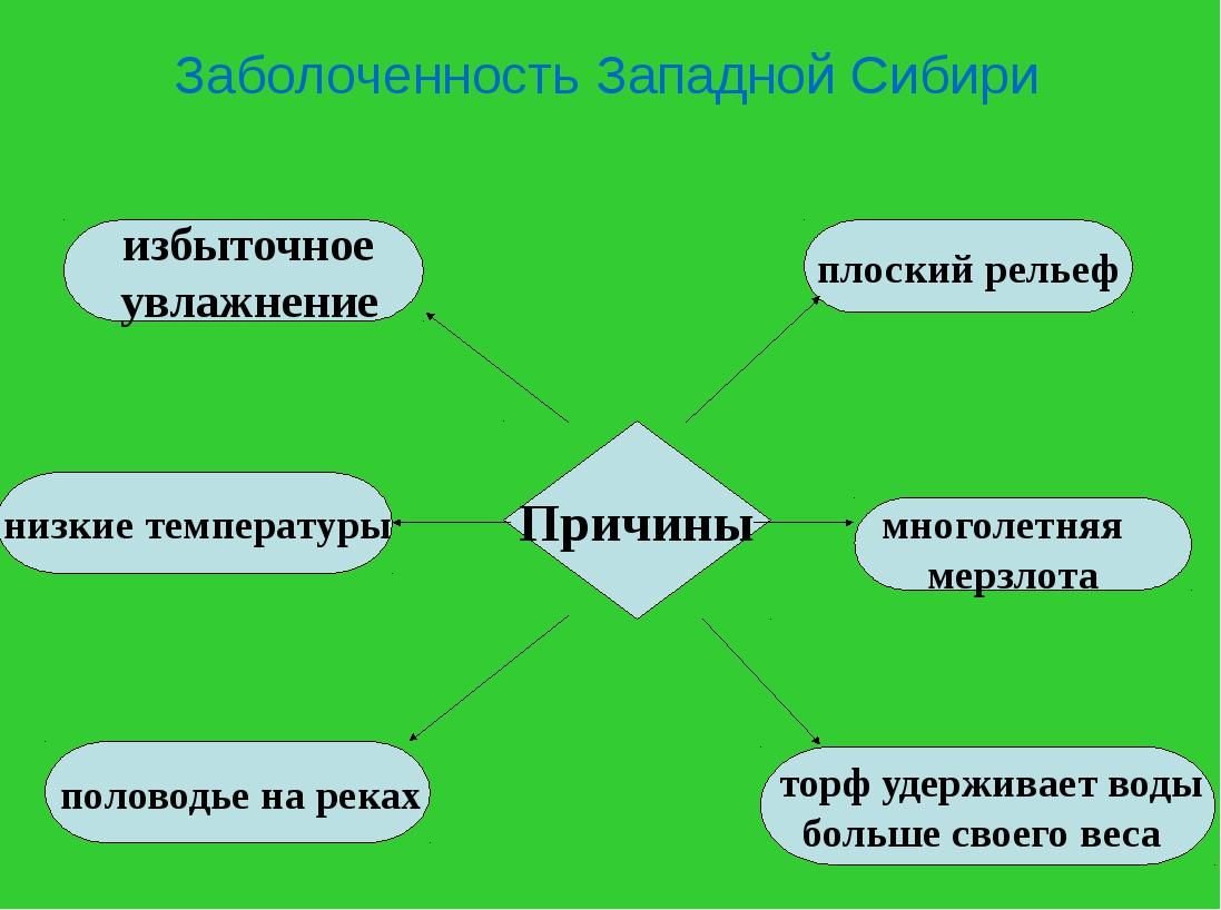 Заболоченность Западной Сибири Причины половодье на реках торф удерживает вод...