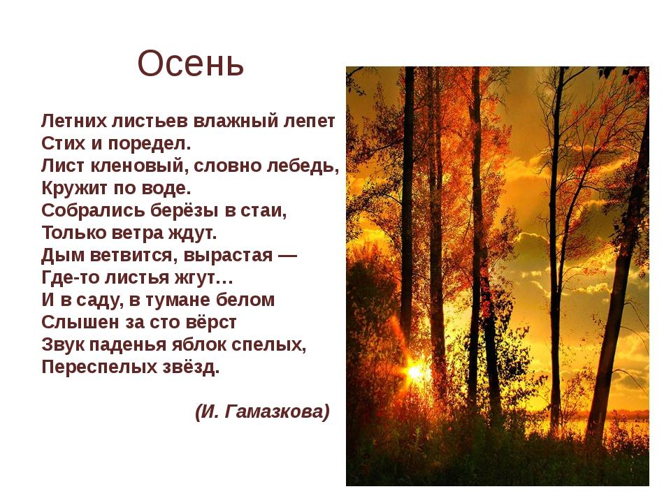 Летних листьев влажный лепет Стих и поредел. Лист кленовый, словно лебедь, К...