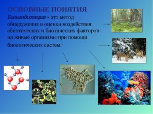 Биоиндикация - это метод обнаружения и оценки воздействия абиотических и био
