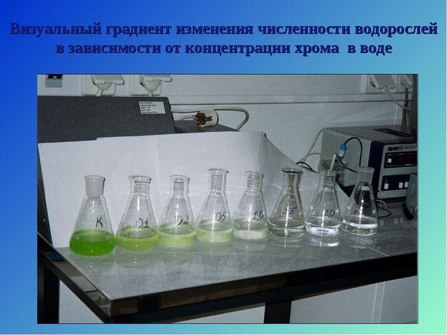 Визуальный градиент изменения численности водорослей в зависимости от концент...