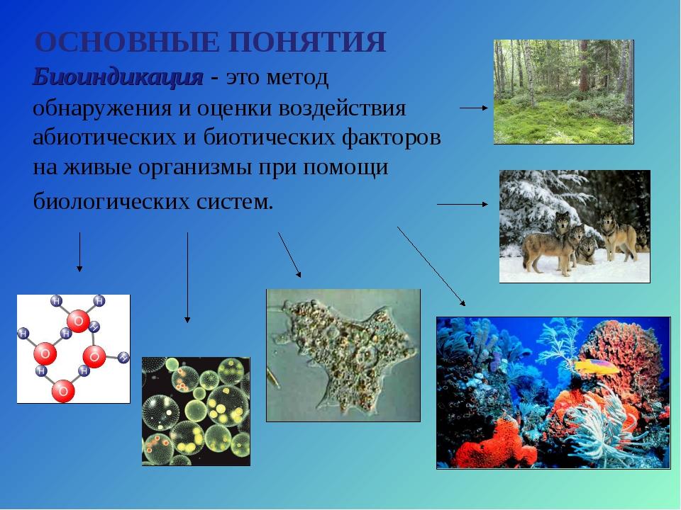 Биоиндикация - это метод обнаружения и оценки воздействия абиотических и био...