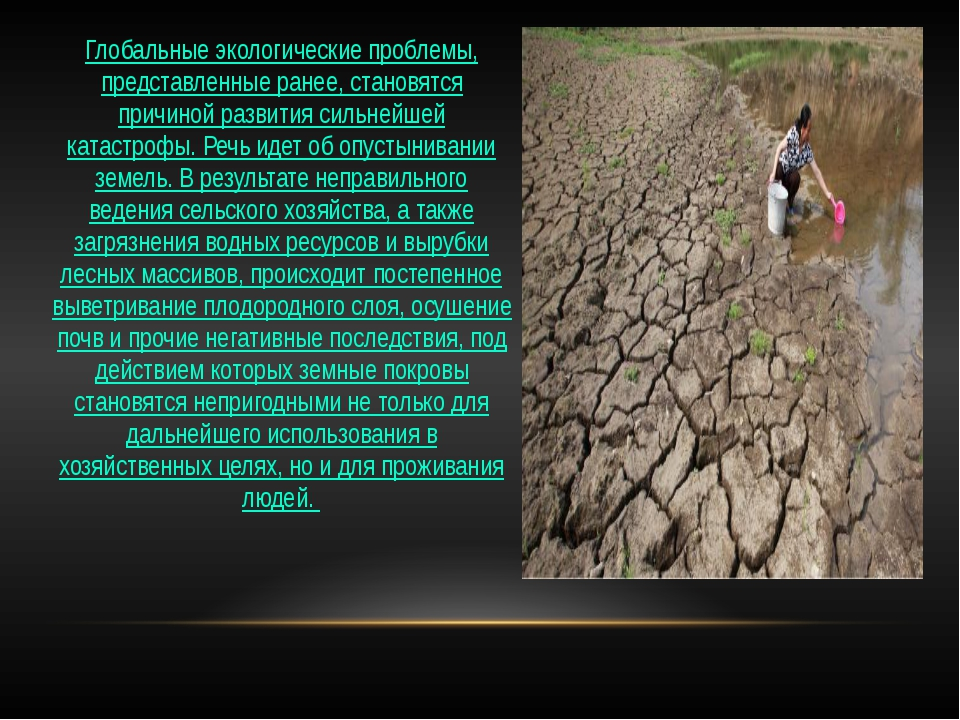 Глобальные экологические проблемы, представленные ранее, становятся причиной...
