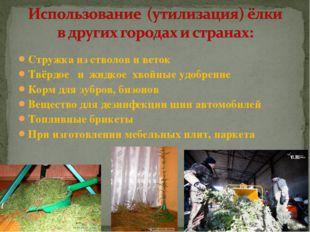 Стружка из стволов и веток Твёрдое и жидкое хвойные удобрение Корм для зубров